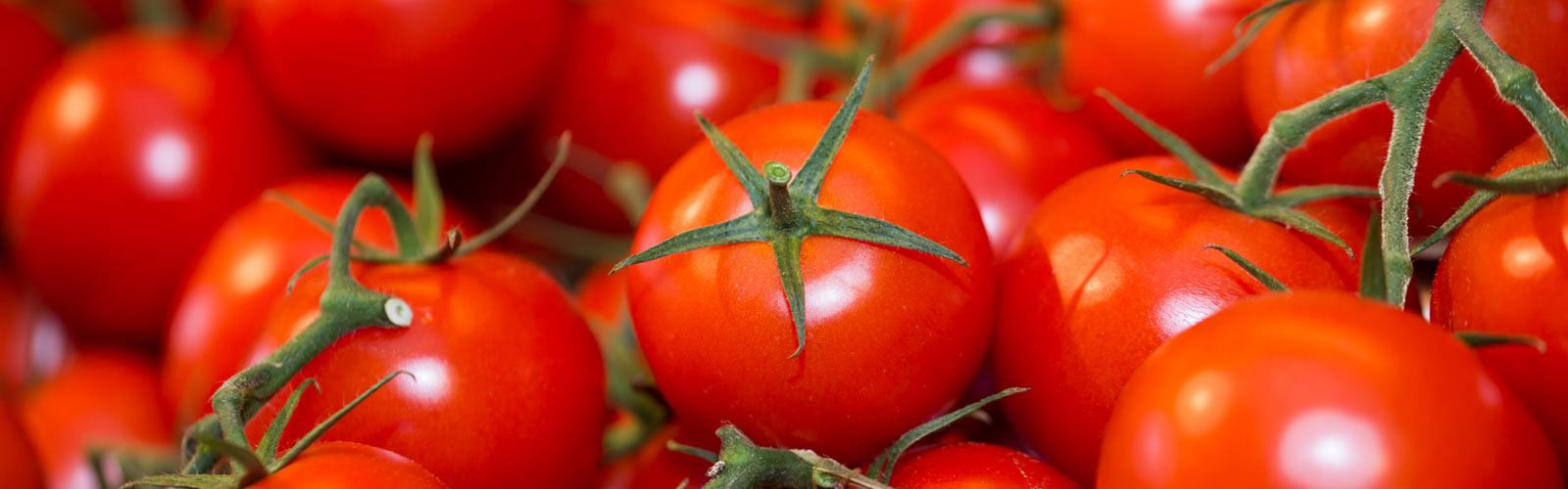 sl-Tomaten